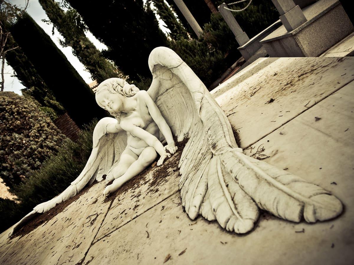 Imagen - Visitas guiadas al cementerio
